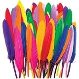Baker Ross Mini Piume Colorate per i Lavoretti e Le Creazioni Fai da Te per Bambini (Confezione da 80)