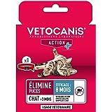 VETOCANIS Collier Anti-puces, au Dimpylate pour chat, 8 MOIS de protection, Coloris rouge