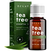 Tea Tree Essential Oil by Eclat - 100% Pure Tea Tree Oil, All-Natural, Vegan & Concentrated - for Treating Skin and for…