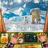 Polar Zug Simulator