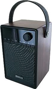Schwaiger 715736 Radiowecker Mit Bluetooth Ukw Und Elektronik