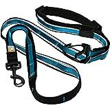 Kurgo Quantum (TM) handsfree hundkoppel för löpning, promenader eller vandring och reflekterande hundkoppel med justerbart mi