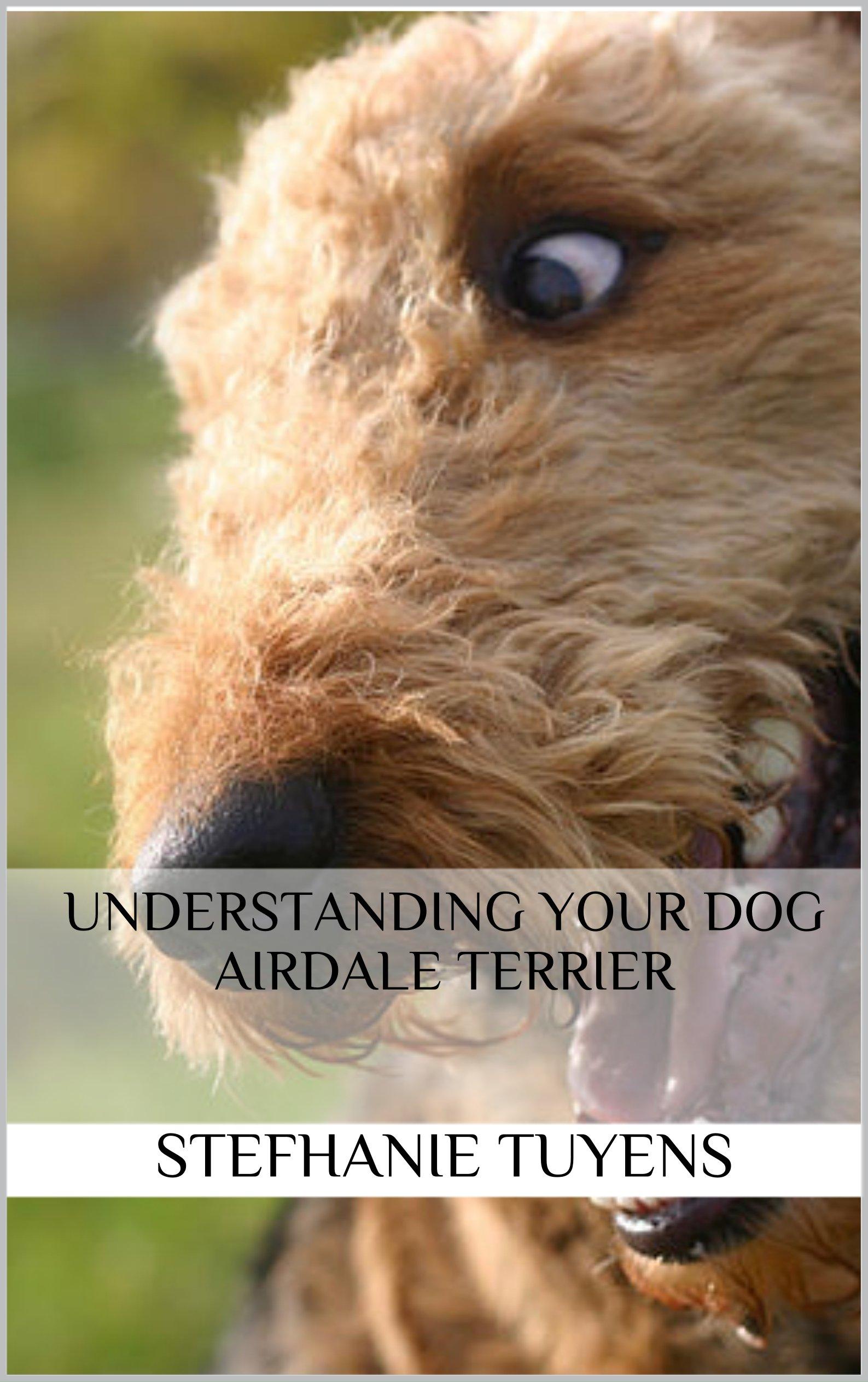Understanding Your Dog Airdale Terrier