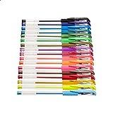 Amazon Basics – Juego de bolígrafos de gel multicolor, prémium, 44 unidades