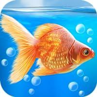 Goldfischfun 3D