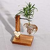 Futaikang - Vaso da fiori in vetro, con supporto in legno, stile vintage, per piante idroponiche, vaso per fiori, decorazione
