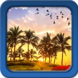 Palmera Live Wallpapers