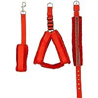 Skora Fancy Nylon Red fur 1.25 Inch Large Dog Harness, Dog Collar & Leash (Chest Size : 28-34 inch)