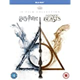 Wizarding World: [10 Film Collection] [Harry Potter/Fantastic Beasts] [Blu-ray] [2001] [2020] [Region Free]