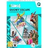 The Sims 4 Snowy Escape Expansion Pack (PC ) [Edizione: Regno Unito]