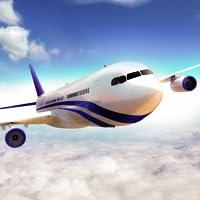 Avion réel Flight Simulator 2019