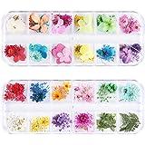 GOTONE 108 stuks echte gedroogde bloemen 3D nail art stickers nail art stickers manicure DIY design (2 dozen)