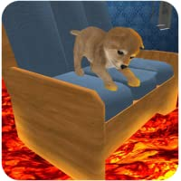 The Floor is Lava : Cute Puppy Mania