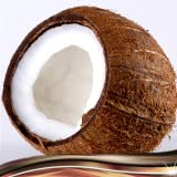 Kokosnuss-Foto-Collage