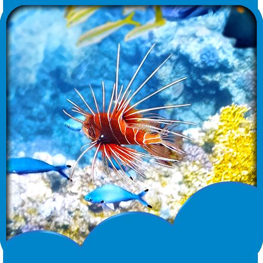fonds-decran-underwater-live