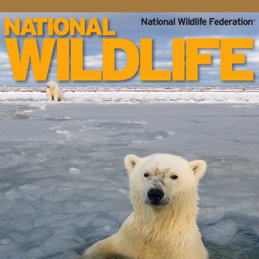 National Wildlife magazine, helping to protect the future of America's wildlife and wild places! -