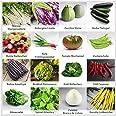 """Mezclar""""hortalizas de jardín"""" 16 x semillas (10-50 piezas) de hortalizas no comunes de Portugal / 100% natural (sin químicos/"""
