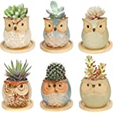 Colmanda 6 Pack Mini Macetas Ceramica, Búho Macetas para Cactus de Cerámica, Set Macetas Suculentas con Desagüé para Mesa de