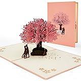 AIBAOBAO Carta di matrimonio, Biglietto d'anniversario 3D Pop Up Greeting Card, Biglietto d'auguri di San Valentino, Carta ro