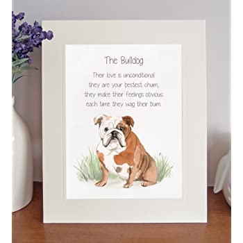 Thank You FROM THE DOG 8 x 10 Picture//10x8 Print Novelty Gift Labrador Yellow