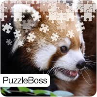 Red Panda Jigsaw Puzzles