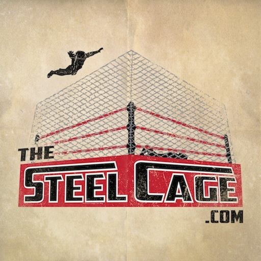 The Steel Cage Wrestling Steel Cage