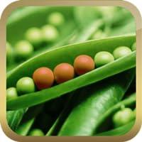 Eat Informed - Food Additives