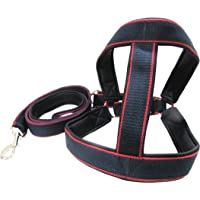 Oz International 1.5 Inch Wide Double Layered Padded Adjustable Dog Harness and Leash for Large Dogs. in Canvass…