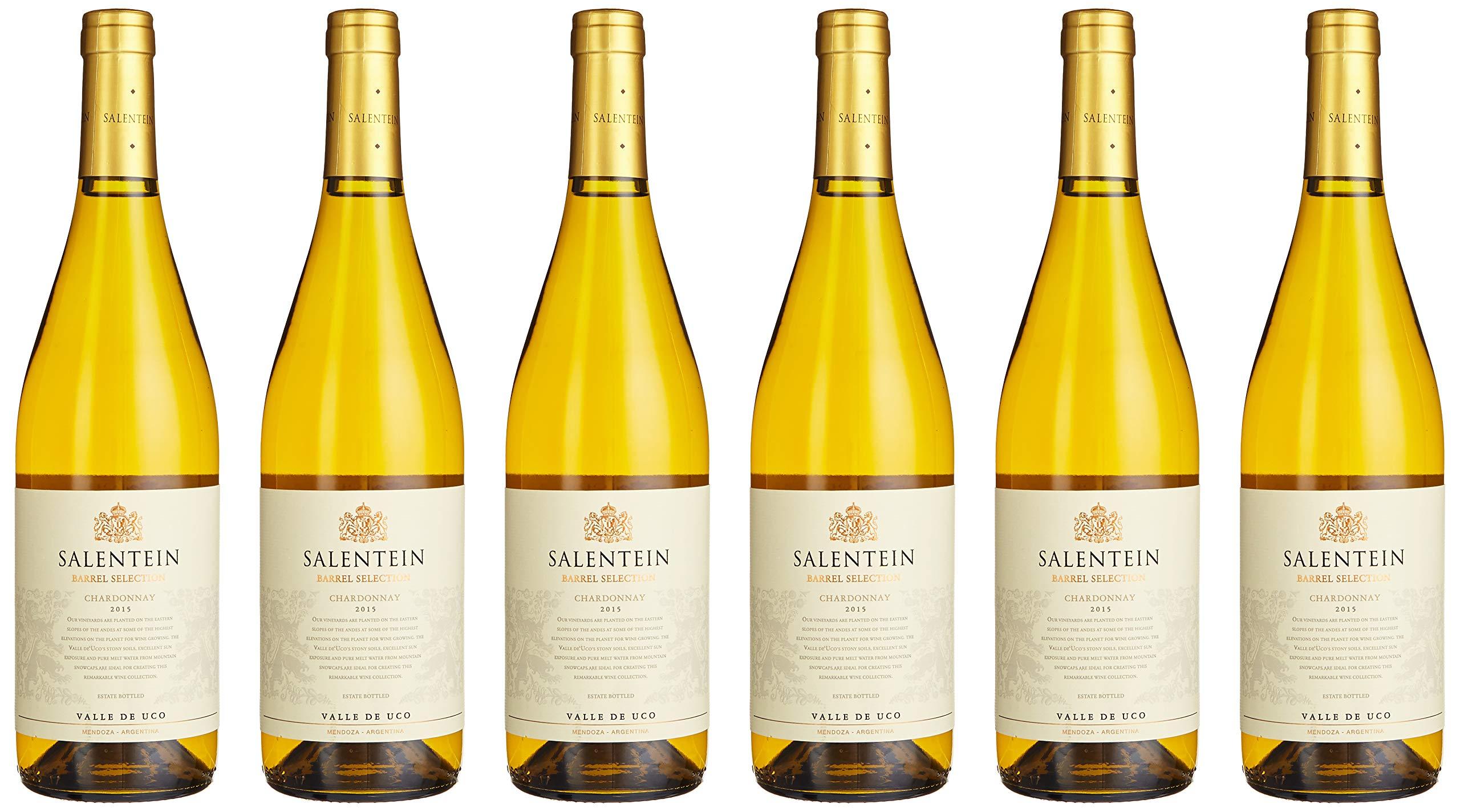 Bodegas-Salentein-Chardonnay-Barrel-Fermented-2015-Trocken-6-x-075-l