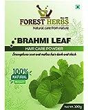 Forest Herbs 100% Natural Organic Brahmi Powder For Hair - 100 Grams