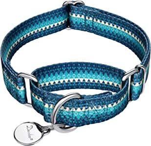 Dazzber Martingale Collars for Dogs – Soft Adjustable Dog Collar, Durable D-ring Heavy Duty, Choke Collar for Large Medium Small Dogs (Medium, 2.5cm Wide, Turquoise)