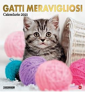 Amazon.it: Calendario Gatto Persiano Long 2021   Sudoku Srl   Libri