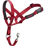 Halti Head Collar, Head Halter Collar for Dogs, Head Collar to Stop Pulling for Large Dogs