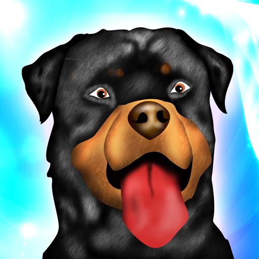 Hund Agility Hindernisrennen Dressurwettbewerb (Martin Locken)