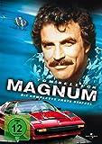 Magnum - Die komplette erste Staffel [Import allemand]