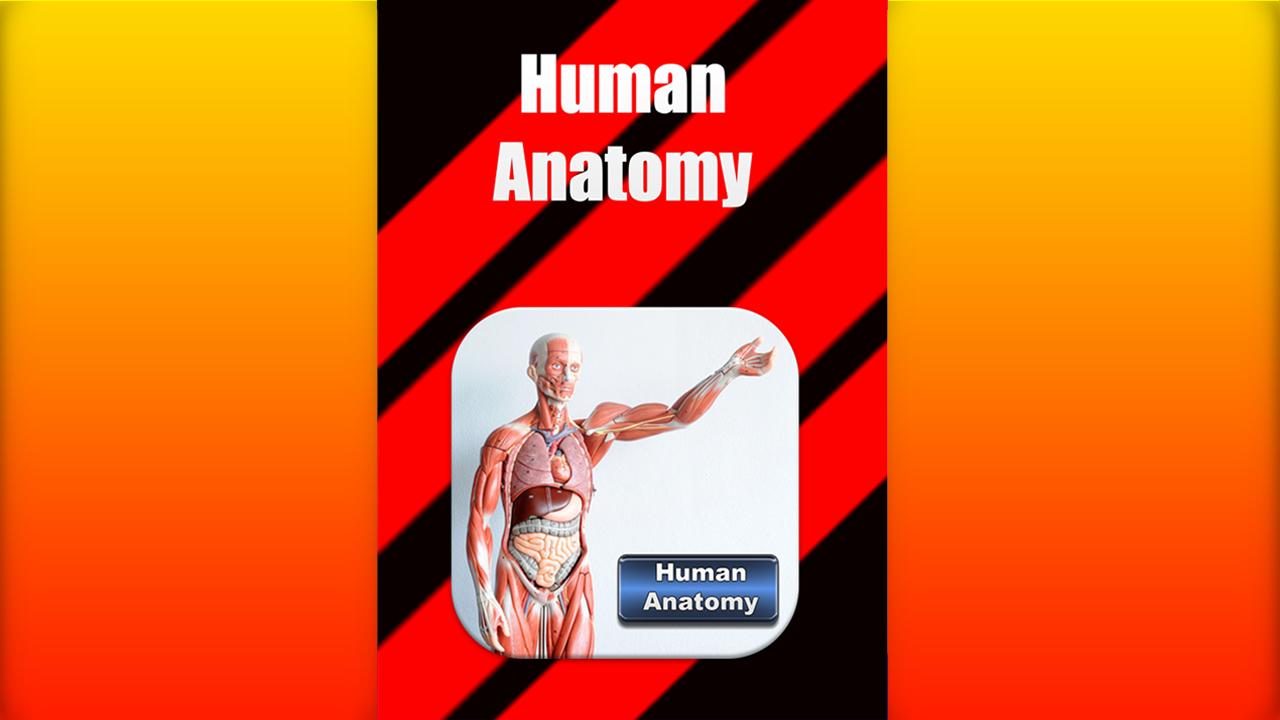 Zoom IMG-1 human anatomy free