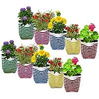 TrustBasket Premium Colorful Stripe Grow Bag - Set of 10 (20*20*35 cm)