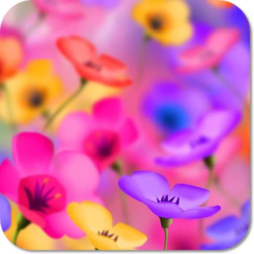 Flower Beauty HD Wallpapers (Calendar Creator-software)