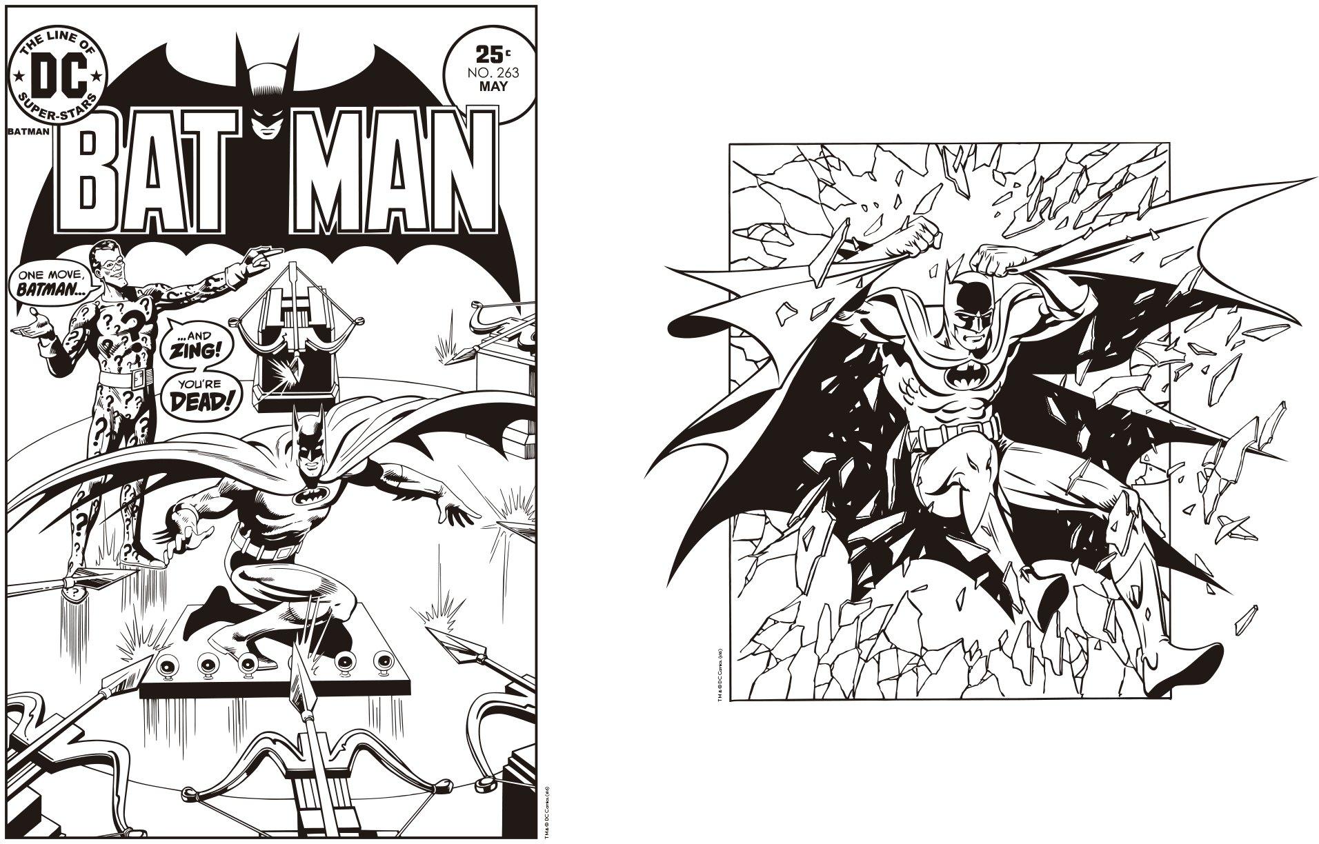 Dc Comics Superhéroes Libro Para Colorear Figuras Y Comics Al Mejor Precio
