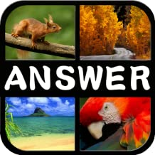 4 Pic 1 Word Puzzle Answer
