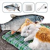 DazSpirit Juguete Pez para Gato - Catnip Incluido, Eléctrica Juguete Interactivo Fish Toys, USB, Lavable, Juguetes de Gatito