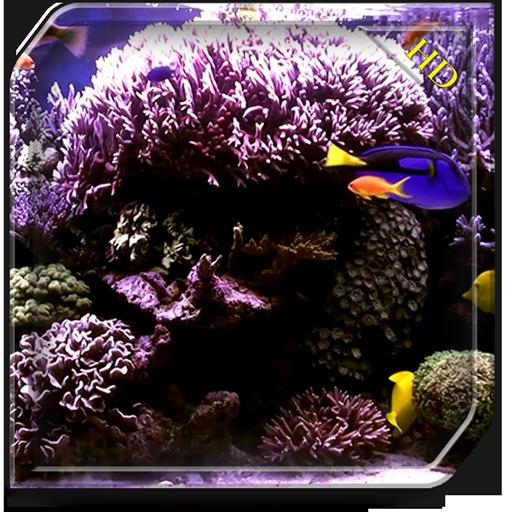 Aquarium Radiance HD - Wallpaper & Themes