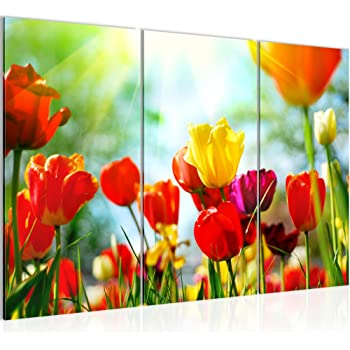 Amazonde 120x80cm Fotodruck Auf Leinwand Und Rahmen Blumenwiese