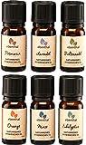 Ätherische Öle Premium EBENTHAL VITAL® • GARANTIERT 100% PUR & NATURREIN • IN DEUTSCHLAND ABGEFÜLLT & GEPRÜFT • Duft-Öl-Set zur Aromatherapie oder im Diffuser mit 6 x 10ml