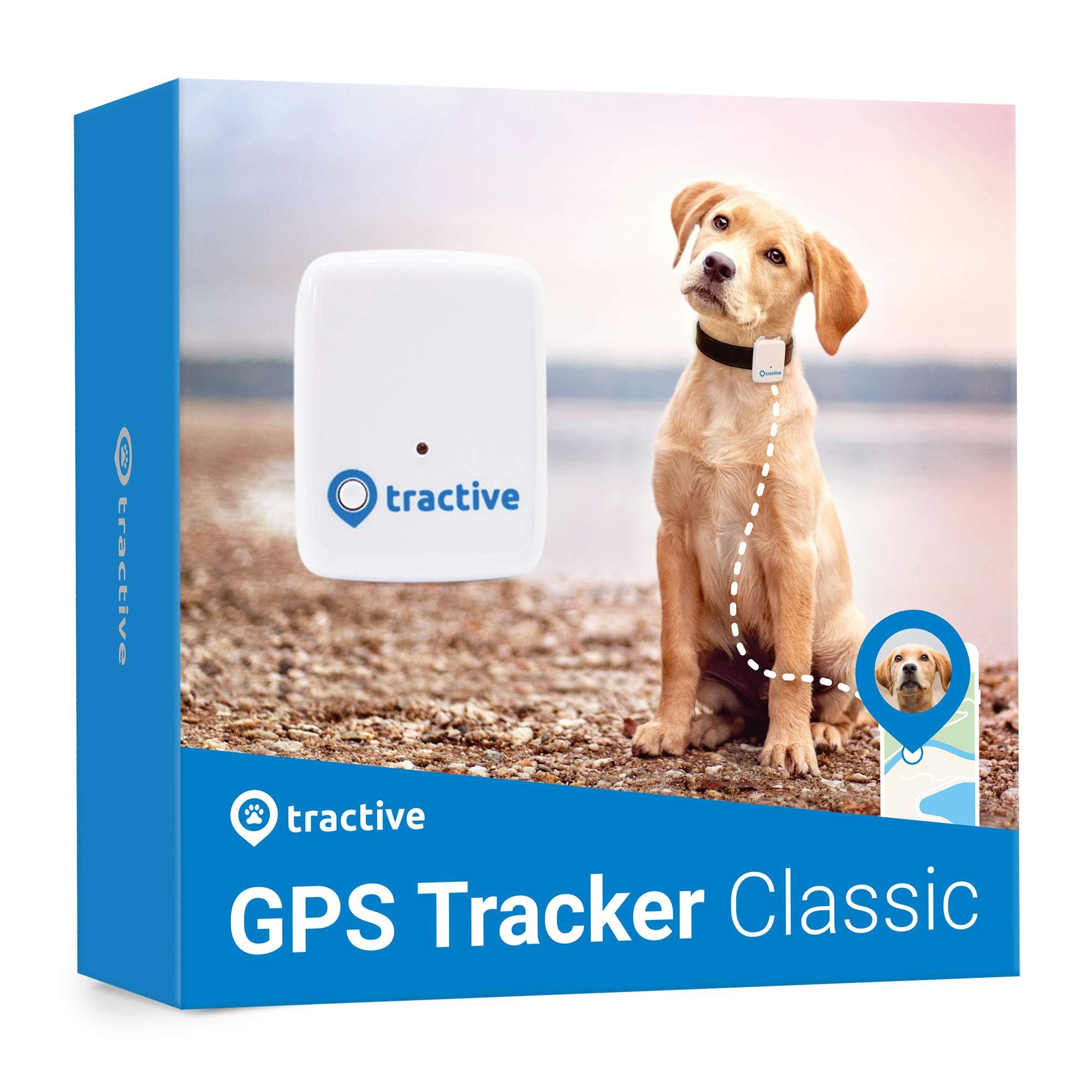 Rastreador Tractive GPS para Perros y Gato