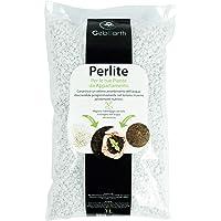 GebEarth - Perlite Giardinaggio per Piante da Appartamento 【 Perlite Espansa 3 L 】
