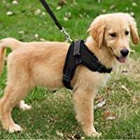 Lady Thikhai Dog Body Adjustable Harness for Vest/Comfortable Harness/Padded Harness with Handle and Hook (L, Black)