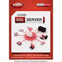 Pebbles Sql Server (DVD)