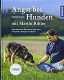 Angst bei Hunden - mit Martin Rütter: Umgang mit ängstlichen und traumatisierten Hunden