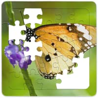 Jigsaw Puzzles Free